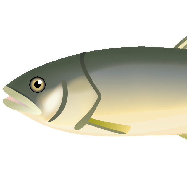 管理人(魚)